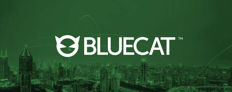BlueCat Networks в России